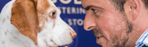 Goddard Vet Group - London dog vets